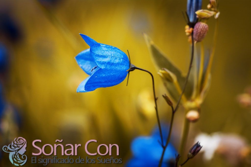 Color Azul Significado y Simbolismo