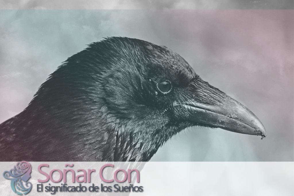 Simbolismo del Espíritu Animal Cuervo