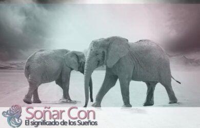 Tótem de Elefantes Animales
