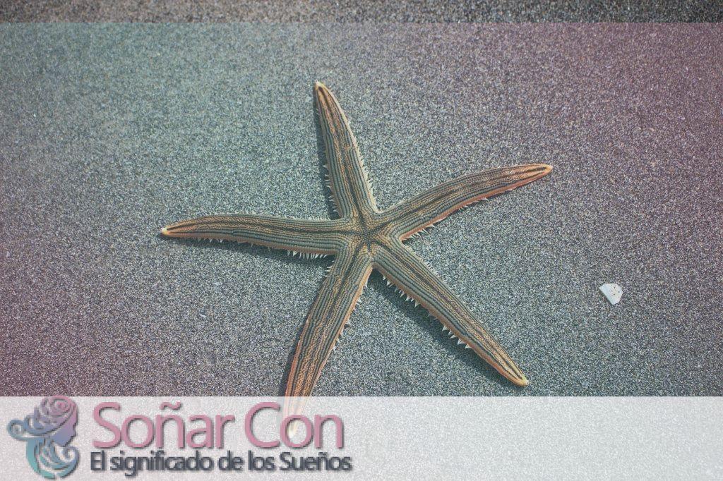 Tótem Animal de Estrella de mar
