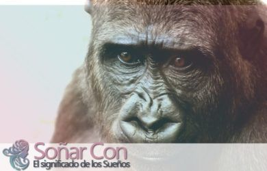 Tótem de Mono Animal - ¿Qué simboliza?
