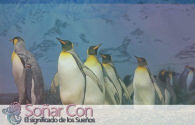 Tótem de Pingüino y su Simbolismo animal