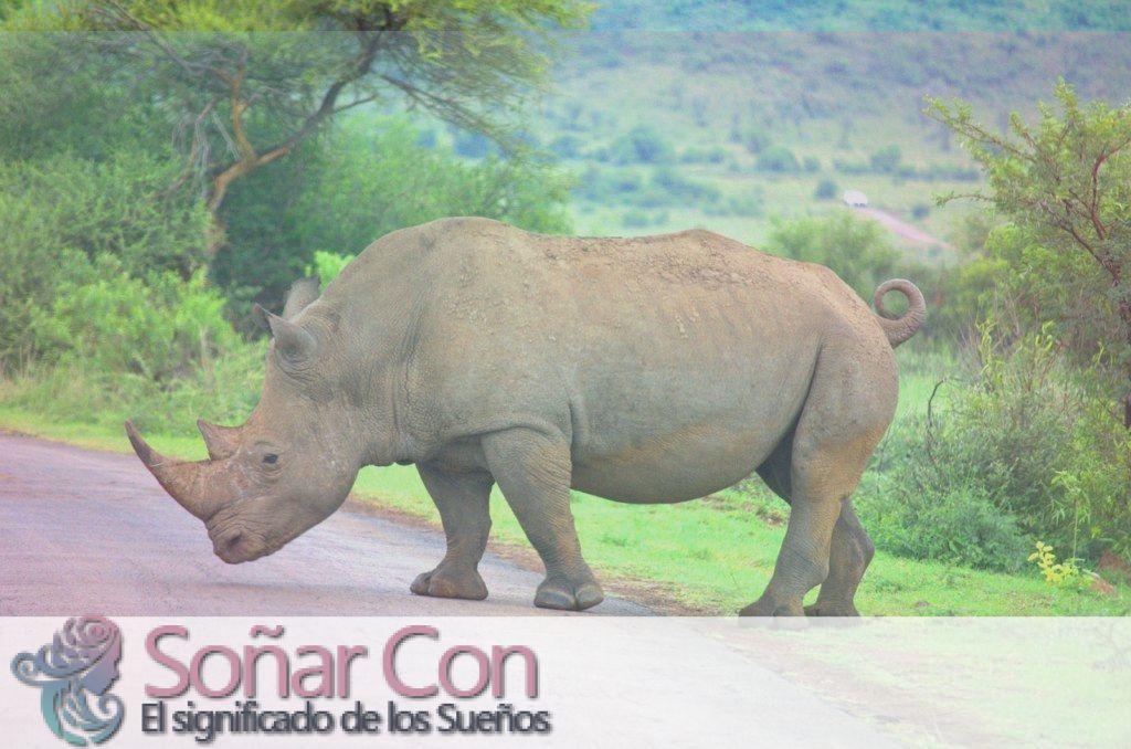 Tótem Animal Rinoceronte