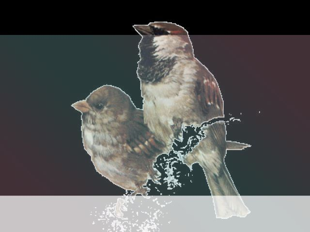 simbolismo del espiritu animal del gorrion