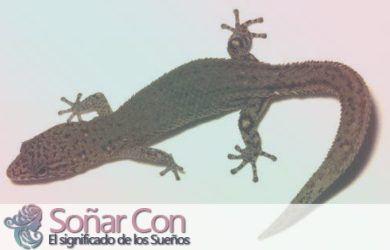 simbolismo del totem de iguana animal