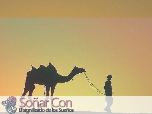 simbolismo del totem de los animales de camello