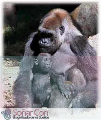 simbolismo del totem de los gorilas animales