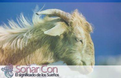 simbolismo del totem del animal de carnero