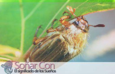 simbolo del totem animal abeja