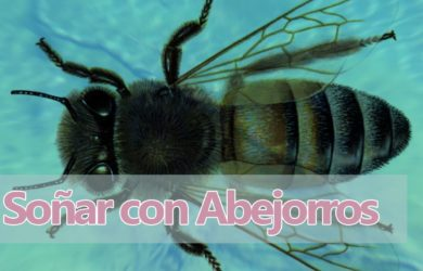 soñar abejorros