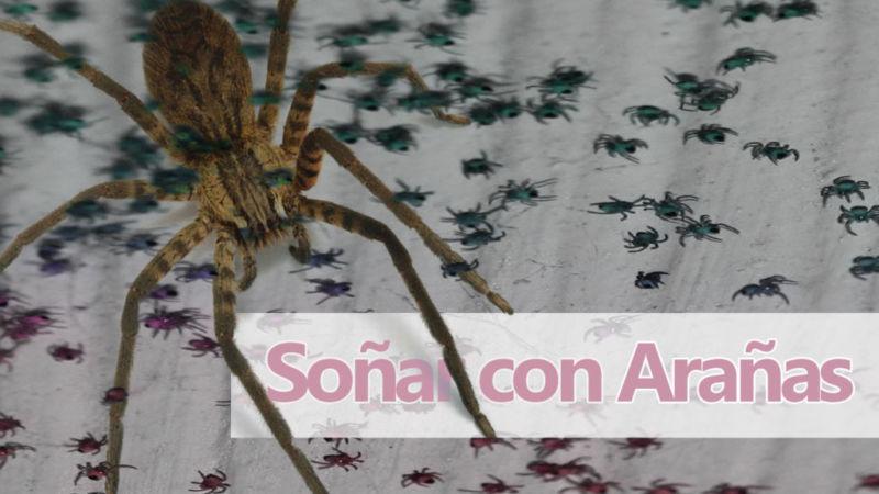 sueños y arañas