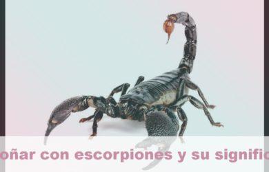 soñar con escorpiones y su significado