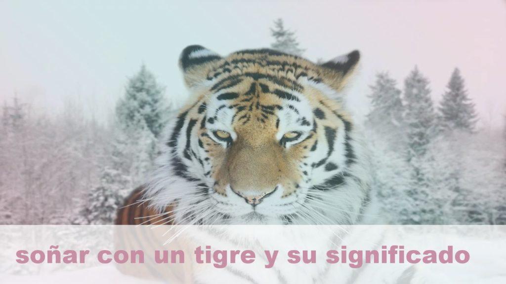 Tótem del Tigre Animal