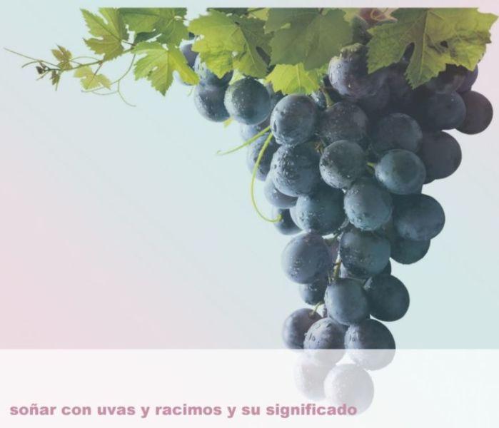 Soñar con uvas y racimos y su Significado