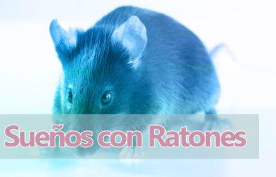 soñar ratones