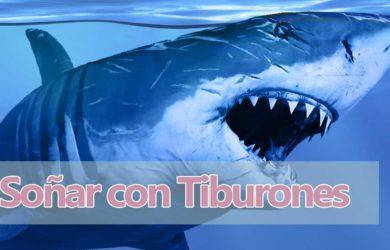soñar tiburones