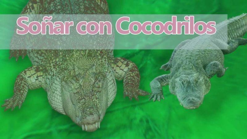 Sueños con cocodrilos