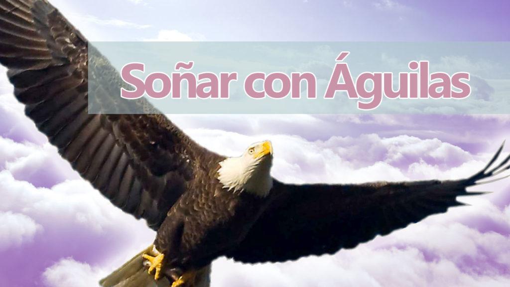 Significado de los sueños con Águilas