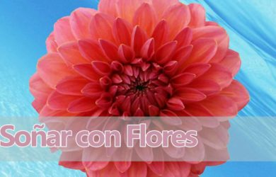 sueños con flores