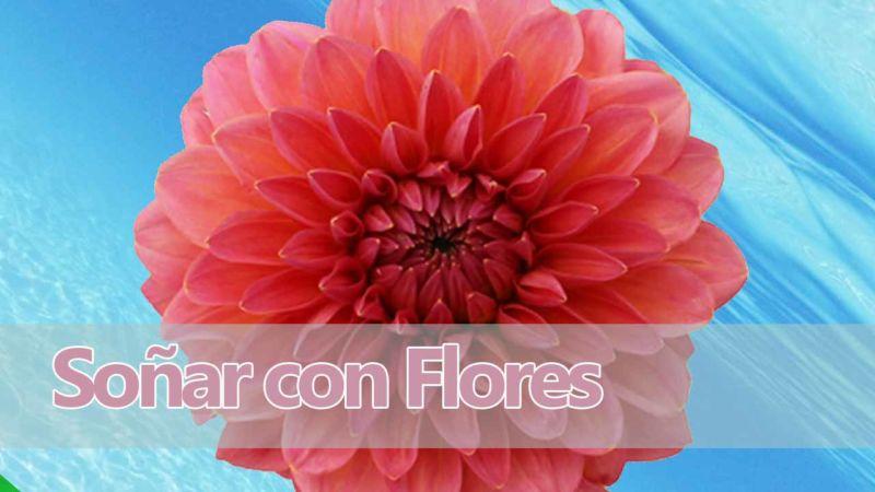 Soñar con flores / Significado de soñar con una flor