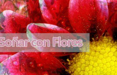sueños flores