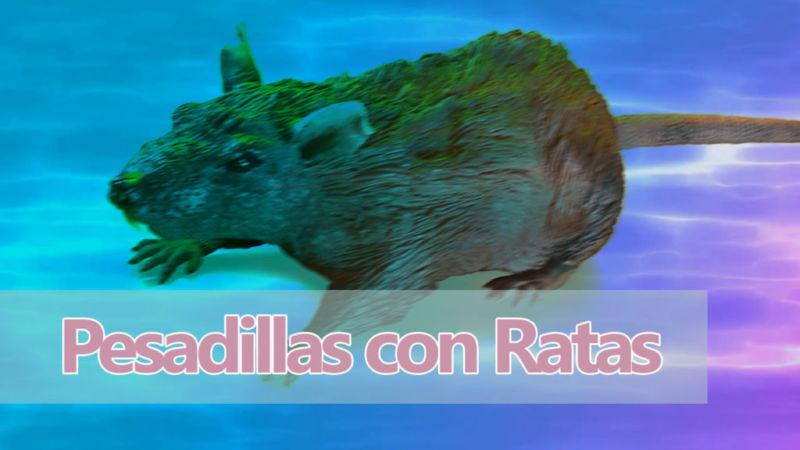 Pesadillas con ratas