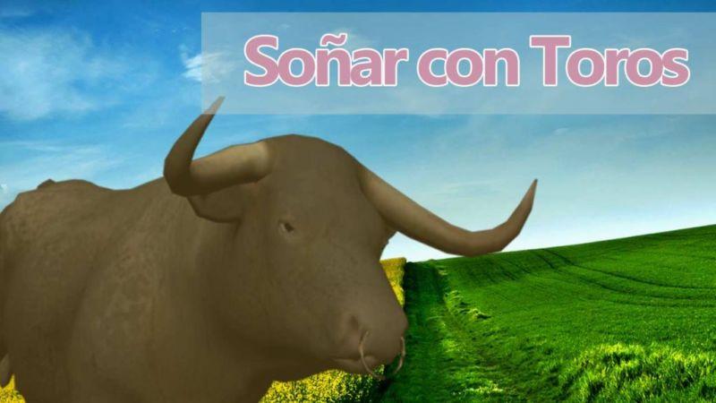 Qué significa soñar con toros