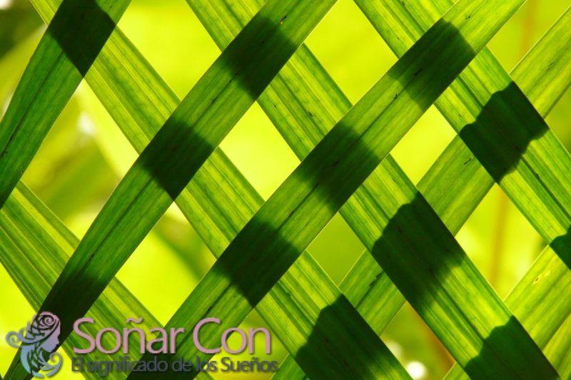 Simbolismo y significado del verde